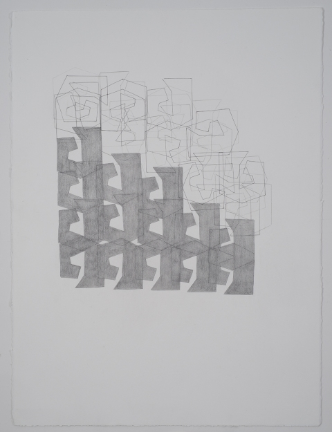 Leslie Kerby Public Housing & Politics Graphite