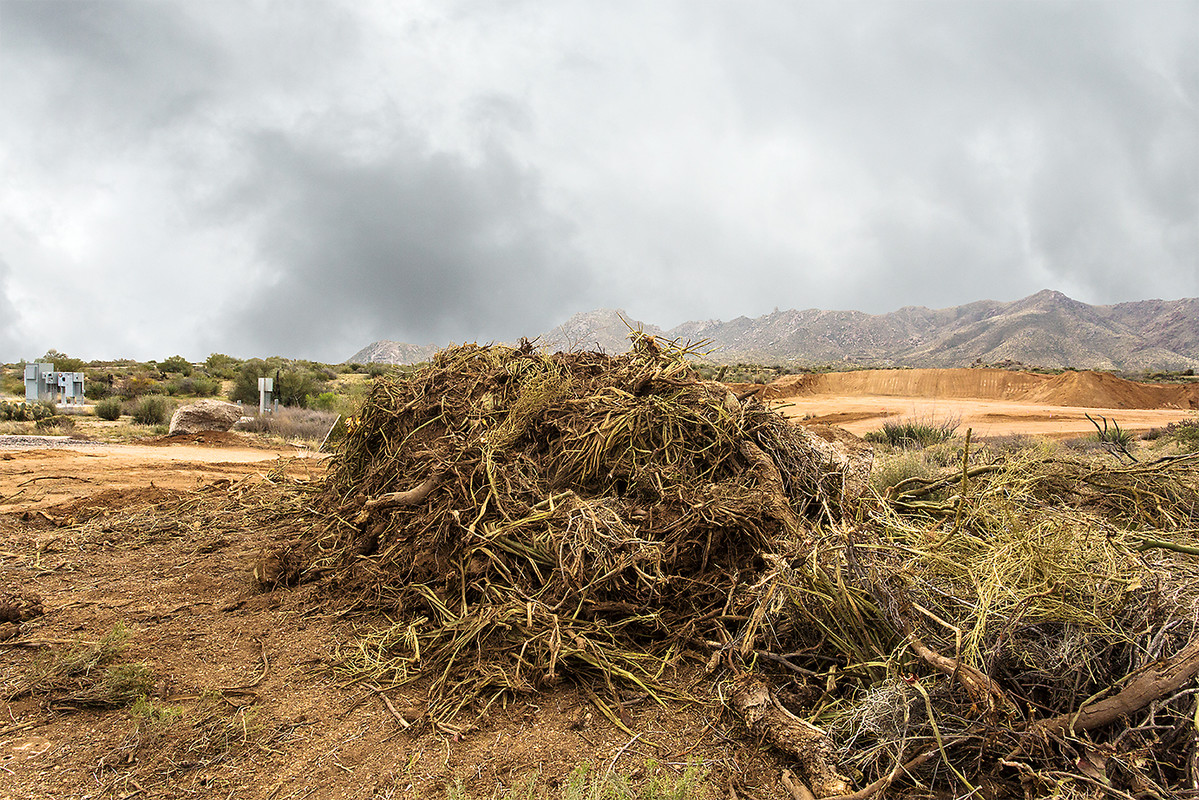 Custom Homes: Razing the Desert Desert Debris, 2015