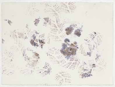 Linda Stillman Botanicals flower stains on paper