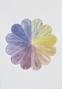 Linda Stillman Botanicals flower stains & colored pencil on paper