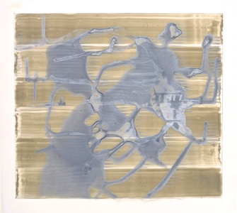 Lindsay Iliff Painted Drawings Acrylic and graphite on mylar
