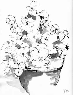 Lois Eby Flowers & Still Life ink & wash on paper
