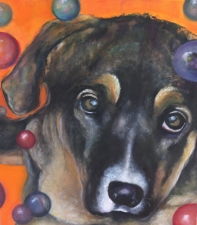 Lori Starkey Animals Oil on Canvas