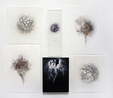 Luisa Sartori In & Out graphite drawings on prepared paper and digital prints