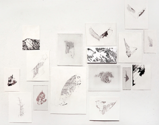 Luisa Sartori In & Out graphite on prepared paper and digital prints on transpatencies