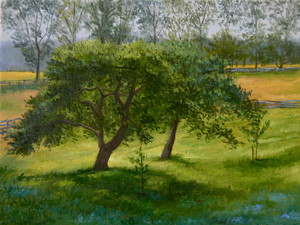 L  U  I  S   C  O  L  A  N Plein Air oil on linen