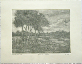 L  U  I  S   C  O  L  A  N Monotypes monotype (ghost print)