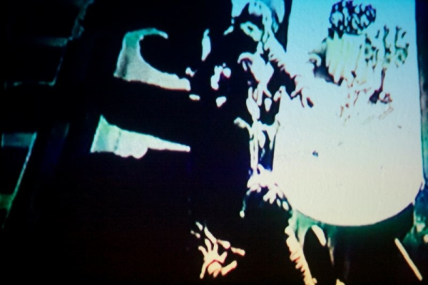 LYDIA GREER  IN PRAISE OF SHADOWS video projection-reanimated film