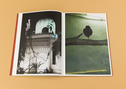 LYNN ALLEVA LILLEY Tender Mint (Photobook)