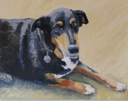 "Painting ""Sit"" Rocky"