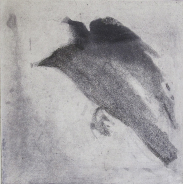 6x6 Intaglio Crows A Murder of Crows no.26  (Angel)