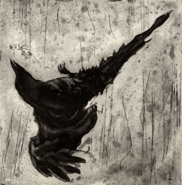 6x6 Intaglio Crows A Murder of Crows no.19 ( upside down tumbler)