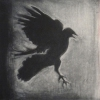 6x6 Intaglio Crows intaglio-aquatint
