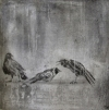 Larger Intaglio Crows intaglio, spit bite