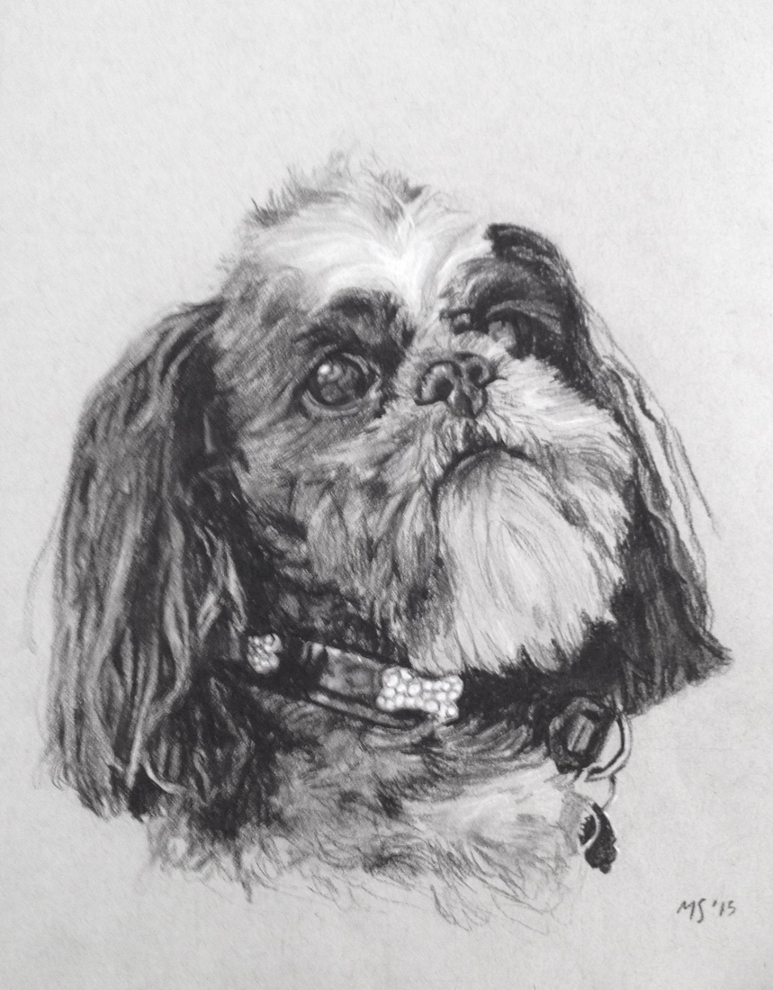 Pets  Pets Charcoal on Paper