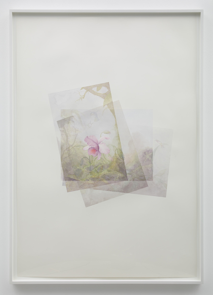Marc Handelman Focus on Foreground, Foliage, Non-Urban Watercolor on paper