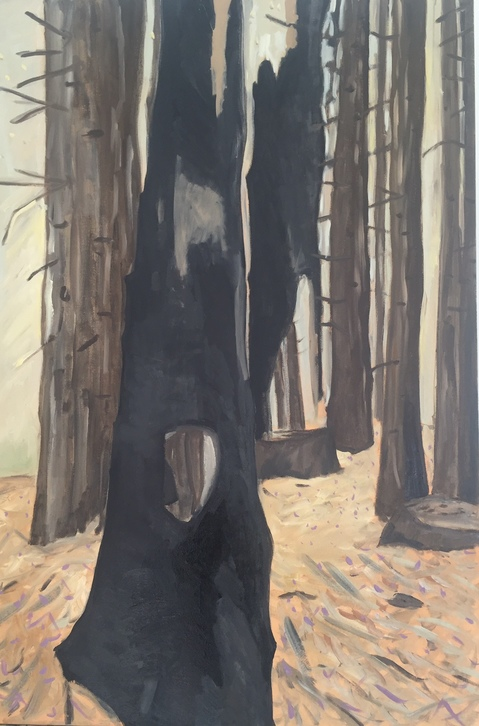 Stumps and Trees