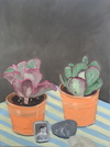 Still Lifes oil on linen