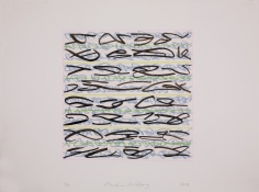 Marsha Goldberg Lost Language: drawings 2009-2012 india ink and colored pencil