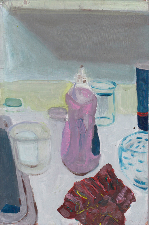 The Kitchen Paintings, 2013 14. dishsoap