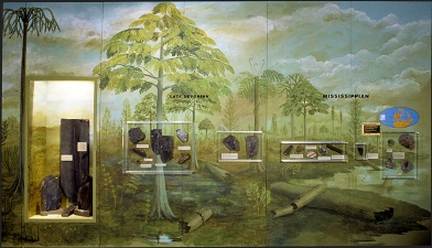 "Mary Kelsey Commissions Cleveland Museum of Natural History, ""Cleveland Before Cleaveland"" Exhibition"