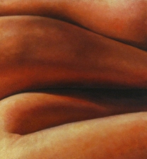 Matthew Lahm Fleshforms 2004-2006 Oil on Canvas