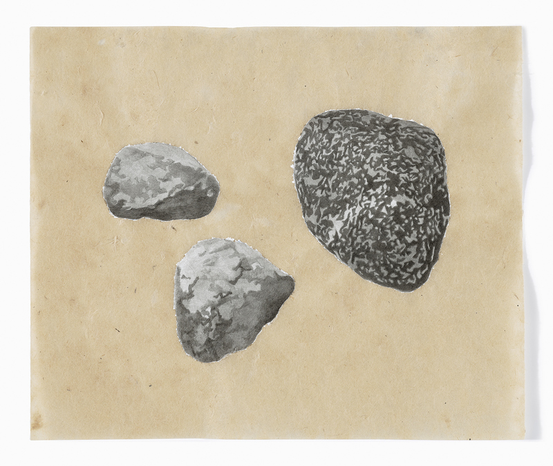 estabrook rocks India ink, acrylic gesso, absorbent ground on Nepal paper