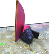 recent work wood, acrylic, plaster