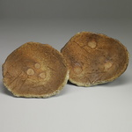 Plates and Platters  Stoneware, sea shells, natural ash glaze