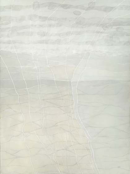 Meg Pierce Paintings graphite, acrylic on canvas