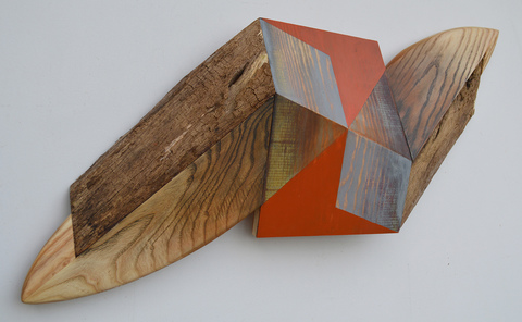 Melinda Rosenberg Board Series aniline dyes and paint on pine, ash and siding