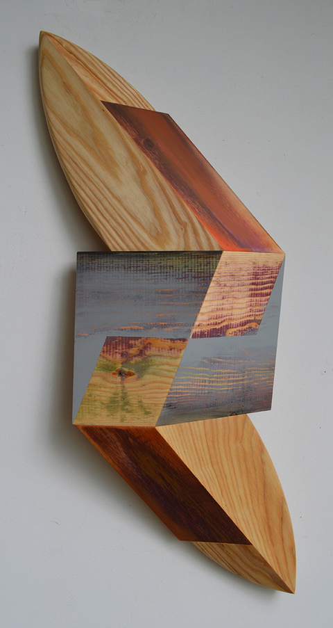 Melinda Rosenberg Board Series aniline dyes and paint on pine and ash