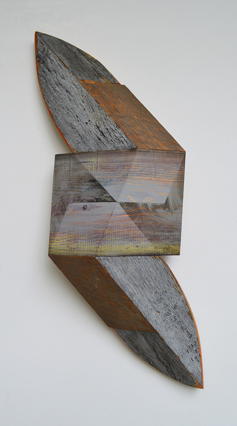 Melinda Rosenberg Board Series aniline dyes and paint on found wood