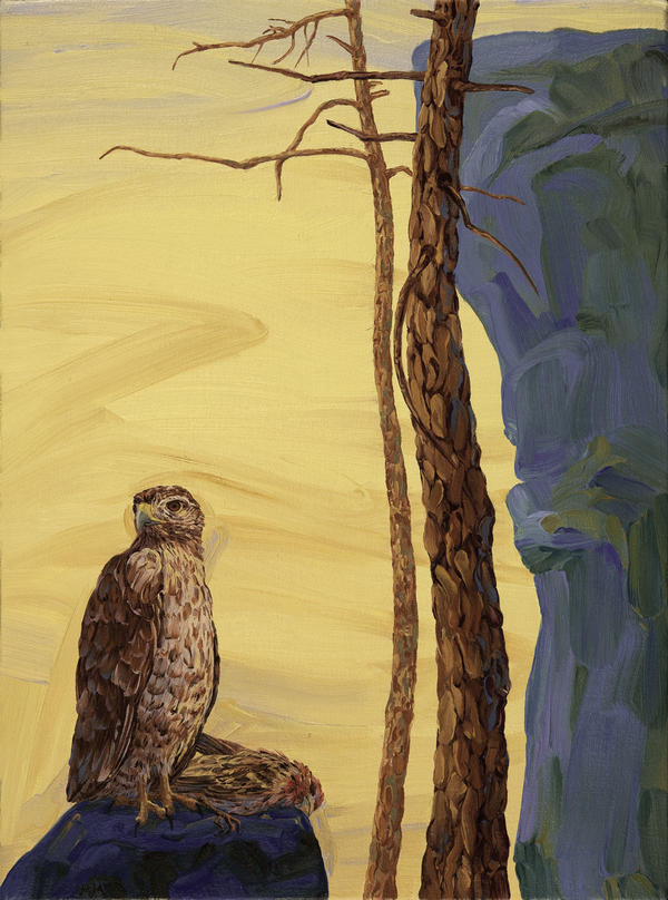 Oils Little Death, Hawk