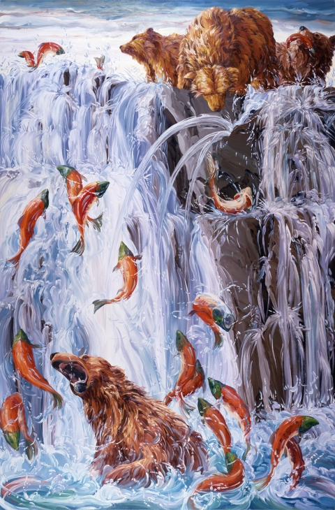Oils Salmon Run