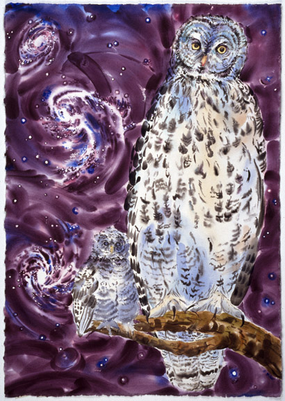Water-based Gray Owls & Spiral Galaxies