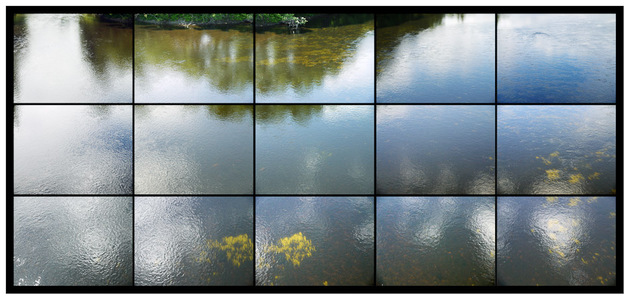 View from Auburn/Lewiston Bridge (grid), 2010