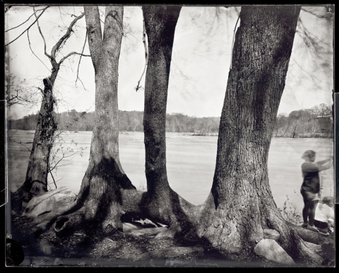 Pony Pasture, Richmond, 2012