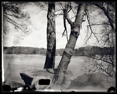 Pony Pasture 7, Richmond, 2012
