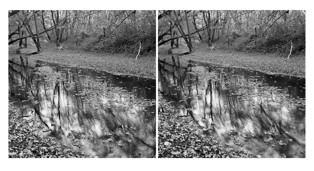 Stereo Pairs Leaves on Water, Durham River Park, Androscoggin River (ME)