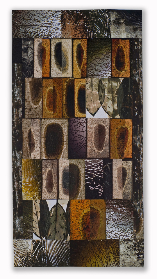 Michael James Studio Quilts Taxonomies cotton & dyes