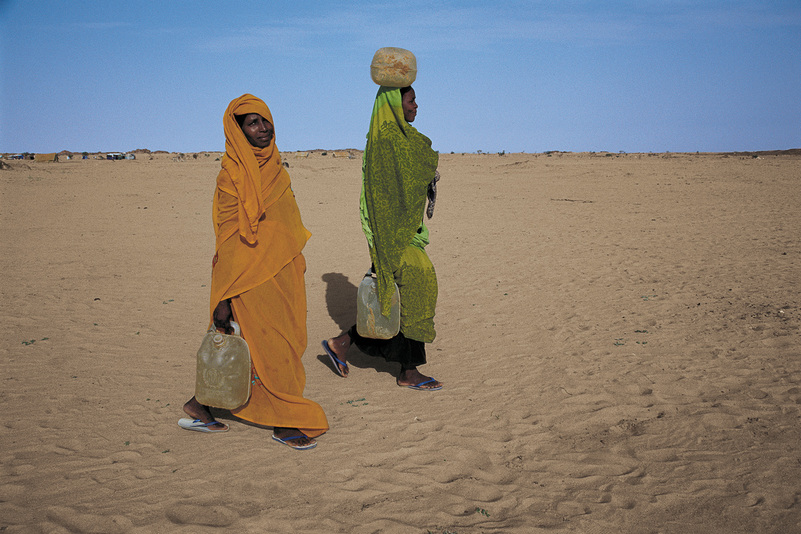 Michal Ronnen Safdie Darfur : Now