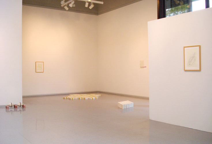 "Mie Kongo 2012 - ""I saw the light was on"" - Heuser Art Gallery, Bradley University, Peoria, IL"