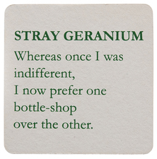 Mitch Cairns Stray Geranium coaster