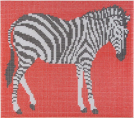 Push Pins Zebra