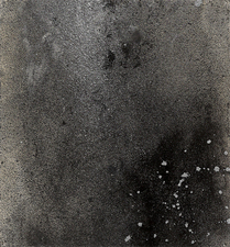 MJ KING Stellarflora Series Mixed Media: charcoal, powdered graphite, liquid silver, iron glitter, on paper