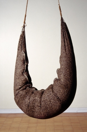 MO  KELMAN Things Still Here series buckwheat hulls, silk gauze, beeswax, twine