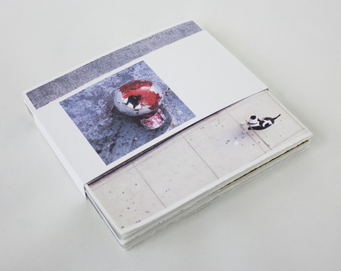 Mollie Murphy ground (photography/artist book)