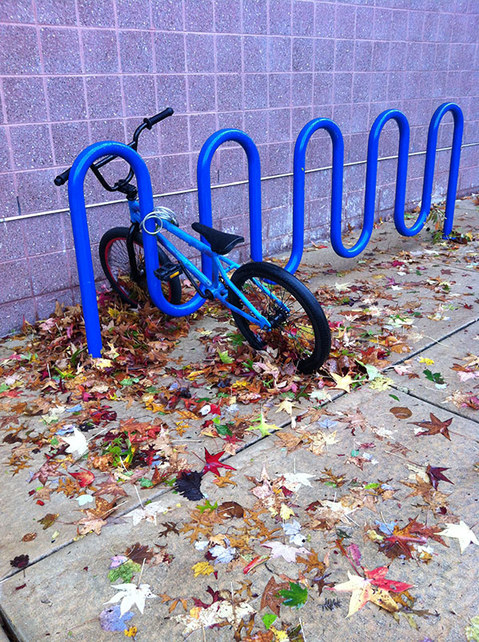 togetherness (ongoing photography) bike, rack, leaves