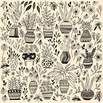Monika Maniecki Patterns and Things